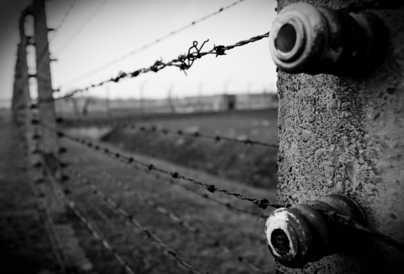 Division wire fence 1a LLLLL