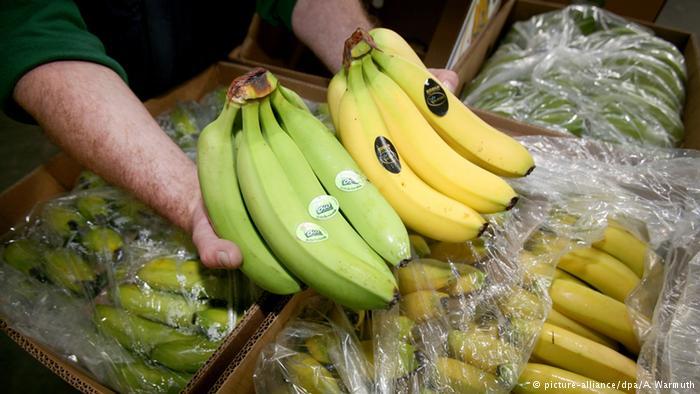 Bananas - DW