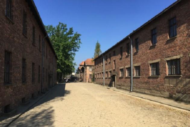Holocaust - EFSYN