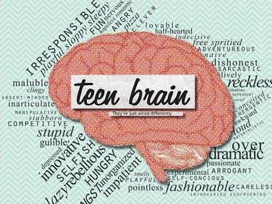 Teen Brain 1a LLLL