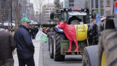 Photo of Farmers descend on Brussels to demand fairer EU subsidies