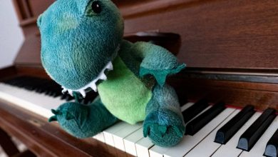 Photo of Dinosaurs in Love hit song by 4yo draws on 'spectrum of human emotion' says music expert