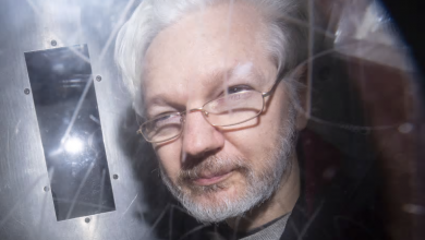 Photo of Assange's case may be delayed until November amid coronavirus lockdown