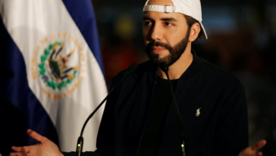 Photo of All the President's Trolls: Real and Fake Twitter Fights in El Salvador