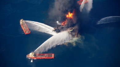 Photo of A Decade After BP Oil Disaster, Gulf of Mexico Still Shows Scars