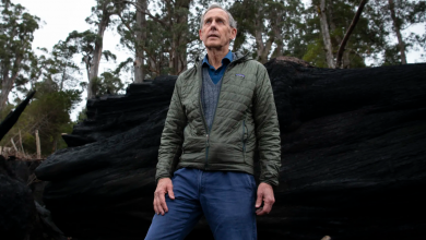 Photo of Bob Brown lawsuit aims to end Tasmanian native forest logging