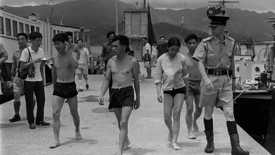 Photo of 'Back where we were': history repeats for Hong Kong's freedom swimmers