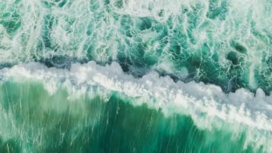 Photo of Planeta océano: el corazón líquido que nos mantiene vivos