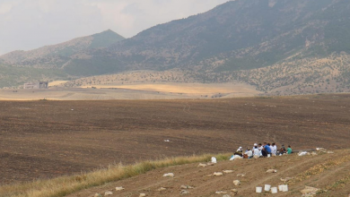 Photo of Video: Preventing a Bloody Harvest on the Armenia-Azerbaijan State Border