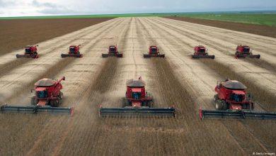 Photo of Landwirtschaft vom Klimakiller zum Klimaretter: Wie geht das?