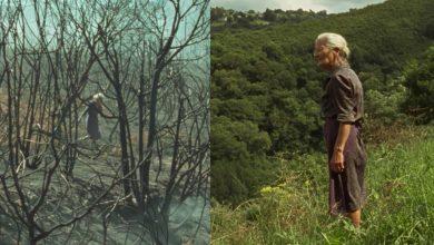 Photo of Η φύση του ανθρώπου και η φύση που καταστρέφει ο άνθρωπος