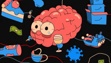 Photo of Your brain on cortisol: Why overstressed gray matter is leading us astray in lockdown