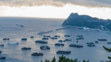Photo of China's 'dark' fishing fleets are plundering the world's oceans