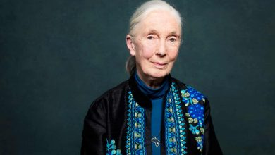 Photo of Jane Goodall: 'Change is happening. There are many ways to start moving in the right way'
